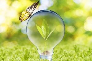 Zdjęcie Biznes i technologia ekologiczna