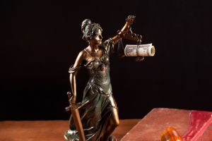 Prawo w administracji i gospodarce