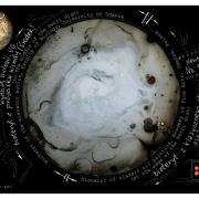 Zdjęcie szalek Petriego z projektu Newbioteryt-E60