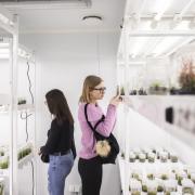 Quiz Wiedzy o GMO i GMM STARBIOS2, fot.K. Mystkowski, KFP