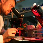 Jedno z laboratoriów Instytutu Biotechnologii UG